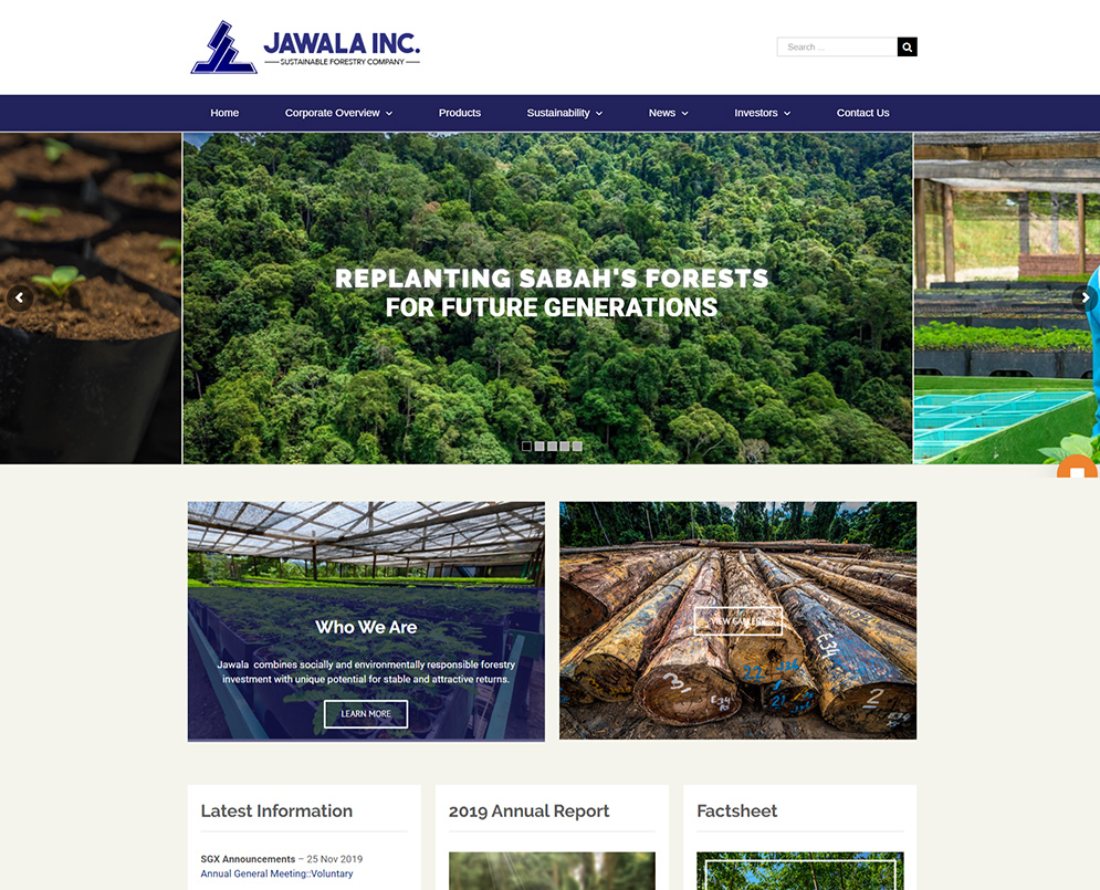 Web design for Public Listed Company